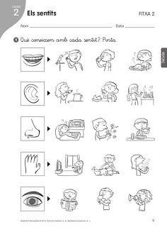 28 Ideas De Taller Miercoles Actividades Actividades Para Preescolar Actividades Escolares