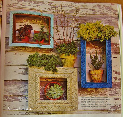 Another way to display your succulent art! | Flickr - Photo Sharing!