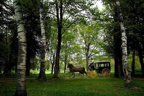 Horse and Carriage ride through the interior of Mackinac Island. #puremichigan