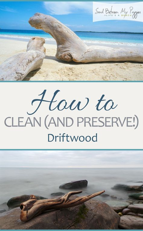 How to Clean (and Preserve!) Driftwood