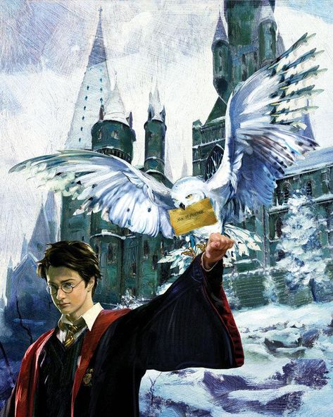 Harry Potter Harry & Hedwig Jim Salvati SIGNED Giclee on Canvas Limited Ed 100