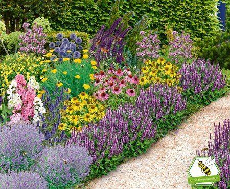 Mein Schoner Garten Bienenfreundliches Gartenbeet Nektar Oase Bunt 22 Pflanzen Gunstig Online Kaufen Mein Schon In 2020 Garten Bepflanzen Garten Pflanzen Pflanzen