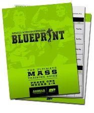 Arnold schwarzeneggers blueprint to mass bodybuilder physique arnold schwarzeneggers blueprint to mass bodybuilder physique and arnold schwarzenegger malvernweather Choice Image