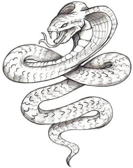 21 Realistic Snake Tattoo Drawing Ideas Petpress In 2020 Snake Tattoo Design Tattoo Design Drawings Tattoo Outline Drawing