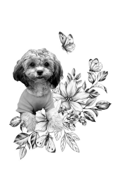#puppy #puppylockscreen #shihpoopuppies #shihpoo #puppymodel #dogfacts #doglovers #lockscreen #lockscreenwallpaper #iphonewallpaper #iphonebackground #background #wallpapers #lockscreenwallpaper  #tattooideas #tattoopet #pettattoo
