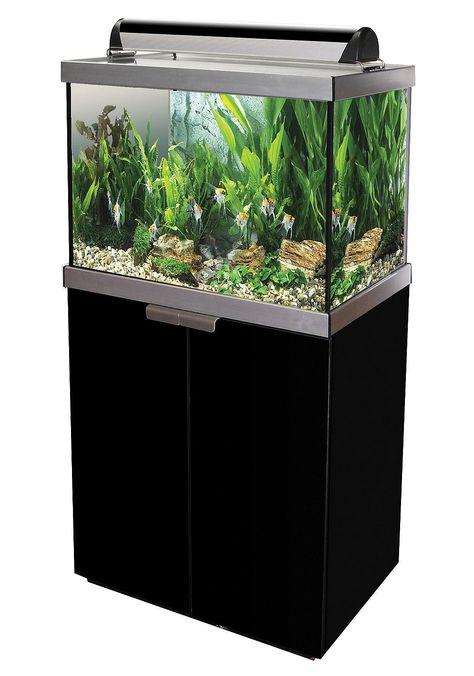37 petsideen  reitsattel juwel aquarium nanoaquarium