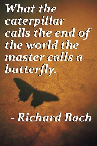 Top quotes by Richard Bach-https://s-media-cache-ak0.pinimg.com/474x/72/af/16/72af16ac639d7057e062dfe8bcdff830.jpg