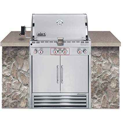 Weber Summit S 460 Lp Grill 2730501 Stainless Steel Review Built In Gas Grills Weber Grill Grill Sale