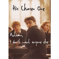 His Chosen One Harry Potter Stories Harry Potter Fanfiction First Harry Potter