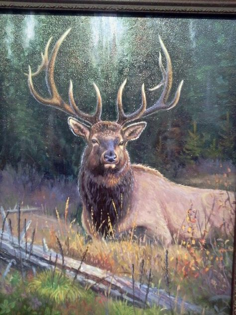 Broken Silence ELK ART PRINT Elk by Daniel Smith Wildlife Poster 11x14