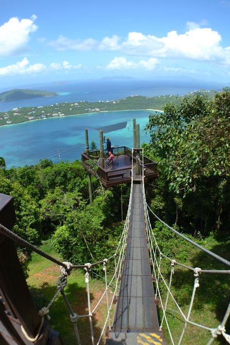 Tree Limin Extreme - Zipline park in St. Thomas, US Virgin Islands Great Vacations, Vacation Trips, Vacation Spots, Beach Vacations, Romantic Vacations, Italy Vacation, Romantic Travel, St Thomas Virgin Islands, Us Virgin Islands