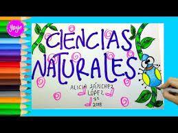 Dibujos Para Ciencias Naturales Búsqueda De Google Frame Mario Characters