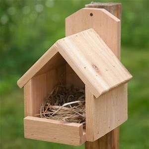 Cardinal Bird House Patterns Bird House Feeder Bird Houses Diy Bird House Kits