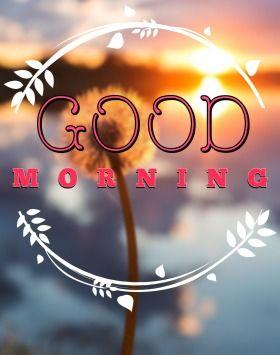 Beautiful Morning wishes | Trending on HappyShappy