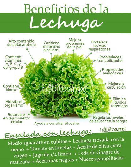 Beneficios De La Lechuga Health And Nutrition Workout Food Healthy Nutrition