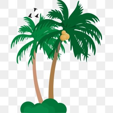 Summer Seaside Coconut Tree Two Coconut Trees Vacation Leisure