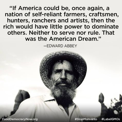 Top quotes by Edward Abbey-https://s-media-cache-ak0.pinimg.com/474x/73/1f/fe/731ffe2c57668e6cae0376ed32f2e684.jpg
