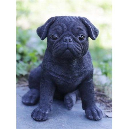 Patio Garden In 2020 Black Pug Puppies Pug Puppy Puppies