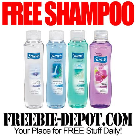 graphic relating to Printable Shampoo Coupons known as 2 No cost Shampoo - Free of charge Artful Shampoo with Coupon - Freebie
