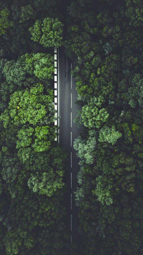 45 Foto Jalan Raya Dan Pemandangan Alam Yang Menakjubkan Di 2020 Pemandangan Fotografi Alam Latar Belakang