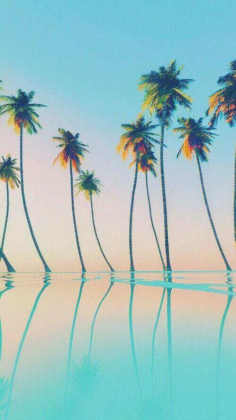 26 Ideas Palm Tree Wallpaper Iphone Beach Summer Tree Wallpaper Iphone Palm Trees Wallpaper Cute Mobile Wallpapers Beautiful palm tree wallpaper for