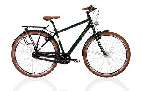 Dancelli Spurtreu 8 0 Das Komfort Bike Fur Individualisten Blog