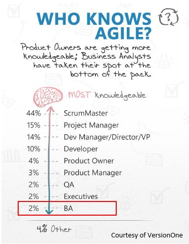 Why Agile is Important for IT Project Managers Project - agile business analyst resume