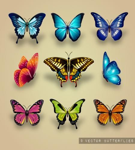 تصميم فراشات منوعة روعة مجاني تحميل مباشر م Butterfly Art Butterfly Painting Butterfly Tattoo