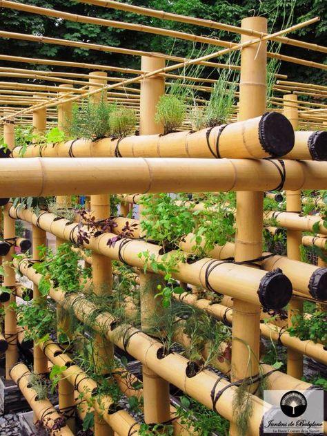 Agriculture urbaine: potager urbain en bambou