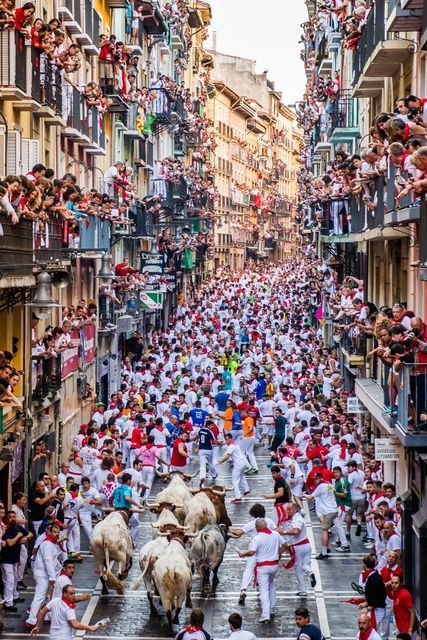 Watching the Running of the Bulls in Pamplona, Spain, in this National Geographic Your Shot Photo of the Day.