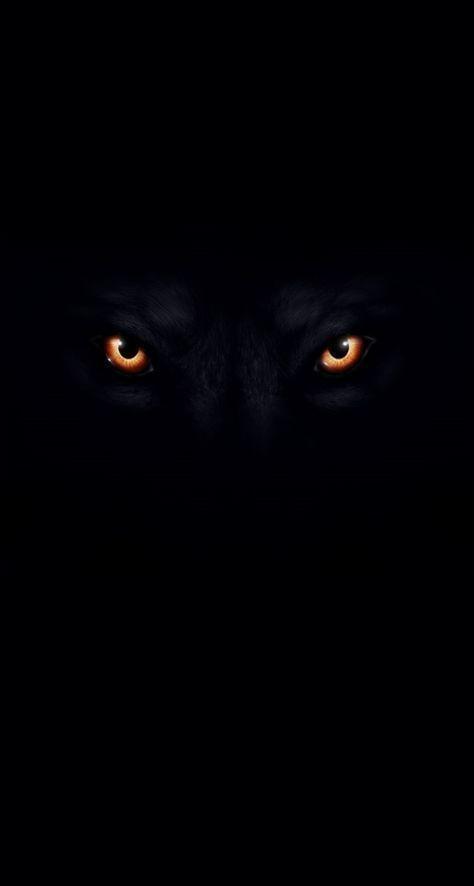 Blackwallpaper Wallpapers Fullscreen Trendingwallpaprs Zairawasim7 Pinterest Black Hd Wallpaper Wolf Pictures Wolf Wallpaper Black wolf hd mobile wallpaper