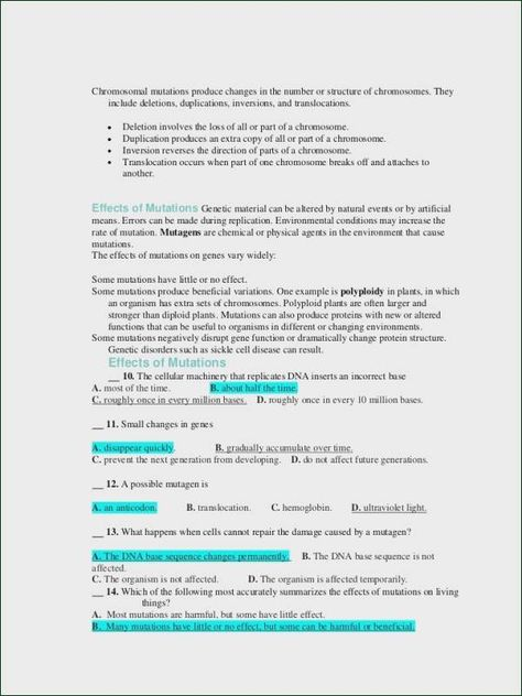 5 Chromosomal Mutations Word Problem Worksheets Nouns And Verbs Worksheets Scientific Notation Practice
