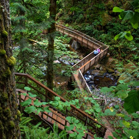 Top Waterfall Trails in the Willamette Valley - Travel Oregon Oregon Vacation, Oregon Road Trip, Oregon Trail, Oregon Coast, New Mexico Road Trip, Pacific Coast Highway, West Texas, Death Valley, Vancouver Island