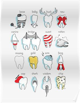 Lindenbrook Dental Care is a comprehensive family dentist office in Flint, MI. Call today to schedule a dental appointment! Humor Dental, Dental Hygienist, Dental Puns, Dental Hygiene School, Dental Life, Dental Art, Dental Assistant Study, Emergency Dentist, Dental Bridge