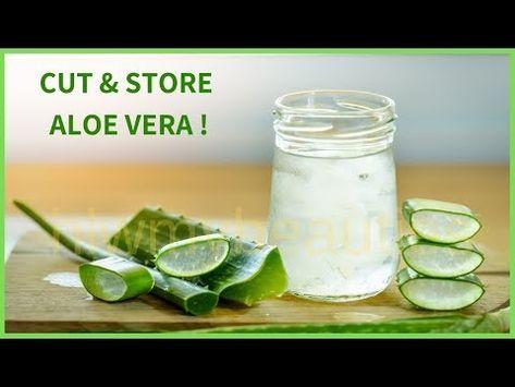 Pin On Aloe Vera Castor Oil Coconut Oil Magnesium Tea Tree Oil Witch Hazel