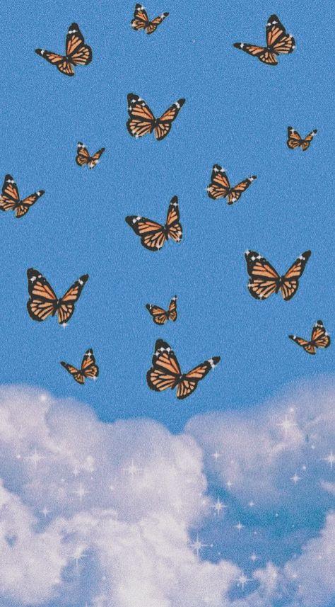 Blue Butterfly Wallpaper Blue Butterfly Wallpaper Butterfly Wallpaper Iphone Iphone Wallpaper Pattern