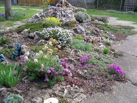 Kiesgarten Steine, Gräser und bunte Blumen Kiesgarten, bunte - pflanzen fur steingarten immergrun