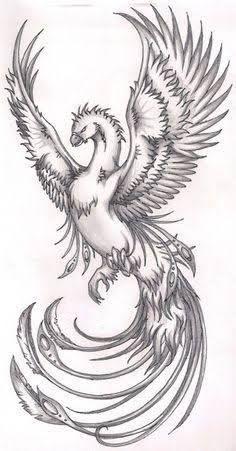 Realistic Phoenix Bird Drawings Image Result In 2020 Phoenix