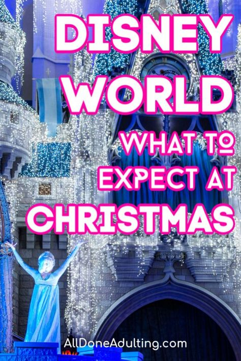 Everything you need to know about visiting Disney World at Christmas! From Disney decorations, to special holiday foods and events, read this post to plan your Christmas trip to Disney World.
