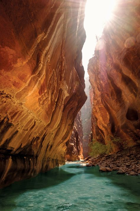 5 of the most effective Cost-free Outdoor Camping near Zion National Forest - Magical Things To Do In trails in zion national park just on travelarize vacations ideas - Zion Camping, The Places Youll Go, Places To Visit, Natur Wallpaper, Voyage En Camping-car, Us National Parks, Narrows Zion National Park, Beautiful Places To Travel, Romantic Travel