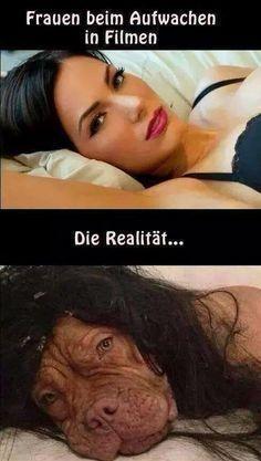 Meme - Traum und Wirklichkeit... - #Meme #Traum #und #Wirklichkeit