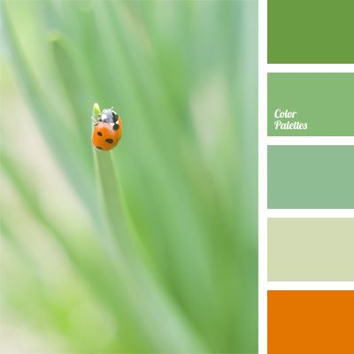 Asparagus, Color For Decor, Color Matching, Color Of Asparagus, Color Of  Greens, Color Palettes For Decoration, Color Solution, Orange Red, Pale Gru2026