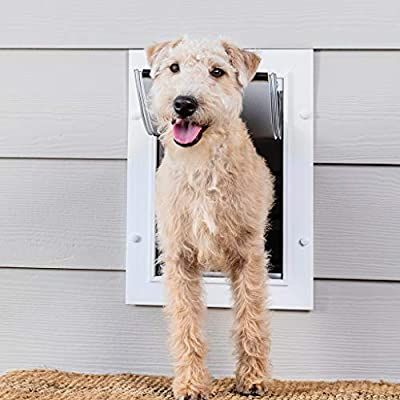 Amazon Com Petsafe New Wall Entry Dog And Cat Door Pet Door With Telescoping Tunnel Medium Pet Supplies In 2020 Wall Entry Dog Door Cat Door Dog Door