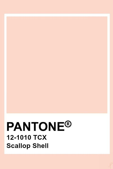 Pantone Scallop Shell