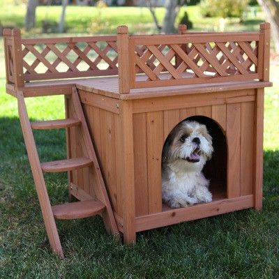 Rooftop Patio Dog Home Small Dog House Wood Dog House Wooden