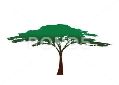African Tree Icon Acacia Tree Silhouette Colorful Vector Isolated Stock Illustration Ad Acacia Silhouette Icon Af Tree Silhouette African Tree Acacia Tree