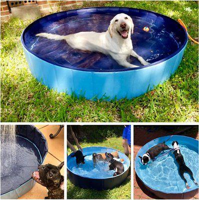 Kopeks Outdoor Portable Dog Swimming Pool Gray Medium Chewy Com Dog Pool Dog Swimming Pools Dog Swimming
