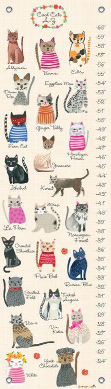 Kitten Growth Chart Ibovnathandedecker