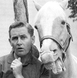 A horse is a horse, of course, of course…but no horse was as unique as Mr. Ed, the talking horse. The Palomino actually did most of his own stunts and received the on-screen credit: Mr. Ed, Himself. How did they get him to talk? The horse was fed a mouthful of peanut butter, which he loved. He would lick his lips continually which gave the impression that he was speaking.