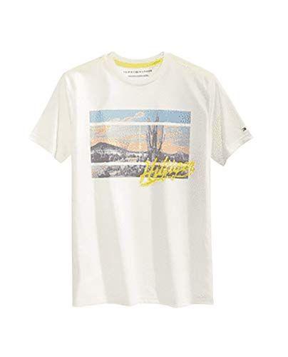 Tommy Hilfiger Polo Shirt MW0MW10766306